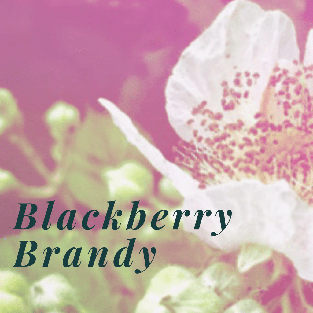 How to make blackberry brandy